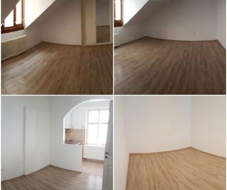 ocazie-vand-3-apartamente-intr-o-casa-individuala-zona-ultracentrala (2)